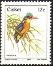 Ciskei - 1985 Birds 12c Kingfisher MNH** SG 14b