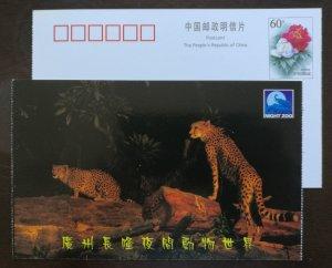 Felines animals Cheetah leopard,China 2001 guangzhou changlong night zoo PSC