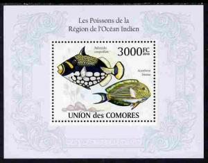Comoro Islands MNH S/S Fish from The Indian Ocean 2010