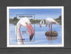 BIRDS - SIERRA LEONE #1739  FLAMINGOS MNH
