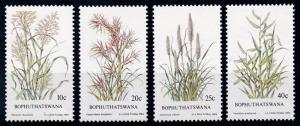 [66258] Bophuthatswana 1984 Flora Plants Grass  MNH