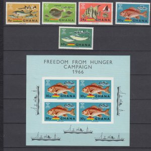 Z3925, 1966 ghana mnh set + s/s #251-5,4a fish