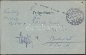 Hungary cover Austria-Hungary  field postcard 1918  WS235194
