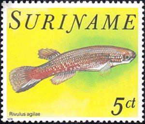 Surinam # 508 mnh ~ 5¢ Fish - Rivulus agilae