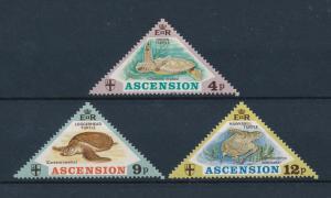 [58974] Ascension 1973 Marine life Sea turtles Triangles MNH