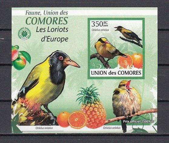 Comoros Is., 2009 issue. Birds on an IMPERF s/sheet.