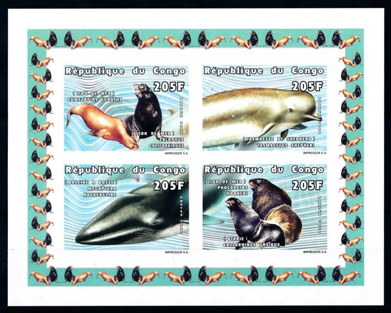[75697] Congo Brazzaville 1999 Marine Life Seal Whale Imperf. Sheet MNH