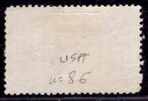 US Stamp #235 6c Columbian MINT NO GUM SCV $50 (as hinged)