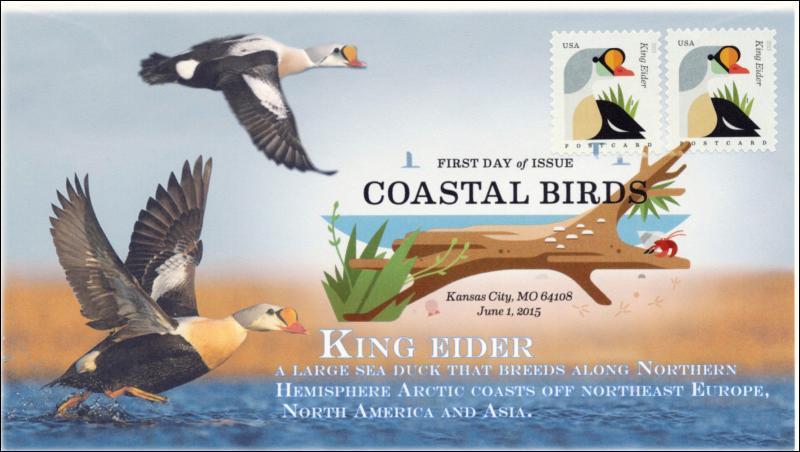 SC 4992, 2015, Coastal Birds, King Eider, FDC, DCP, 15-167