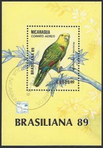 Nicaragua #C1179 CTO (Used) Souvenir Sheet