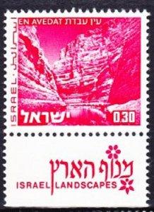 Israel #466 Landscapes: En Avedat MNH Single with tab
