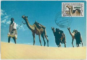 32169 MAXIMUM CARD - POSTAL HISTORY, FDC - Mauritania: Camels, Archaeology, 1960