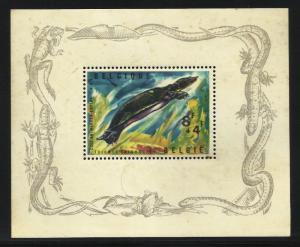 Belgium Semi Postal 1965 Scott# B783 MH Space filler (stains)