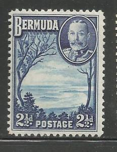 BERMUDA 110 MINT HINGED, GRAPE BAY