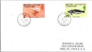 British Antarctic Territory, Polar, Marine Life, Fish