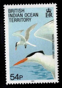 British Indian Ocean Territory BIOT Scott 101 MH* Crested Tern Bird stamp
