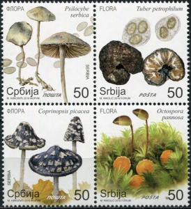Serbia 2019. Wild Mushrooms (MNH OG) Block of 4 stamps