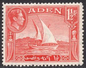 ADEN SCOTT 19