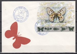 N. Korea, Scott cat. 2827. Butterfly s/sheet on a First day cover. ^