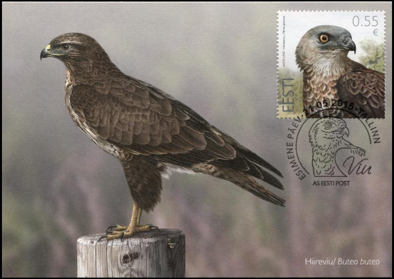 Estonia. 2015. European Honey Buzzard (Maximum Card, Mint)