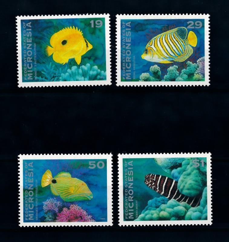 [72240] Micronesia 1993 Marine Life Fish  MNH