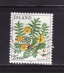 Iceland 587 U Flowers (A)