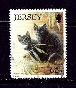 Jersey 665 Used 1994 Cats