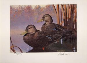 OHIO #9 1990 STATE DUCK STAMP PRINT BLACK DUCKS by Jon Henson Edition size:590