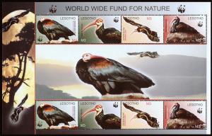 Lesotho Scott 1337 (2004) WWF Souvenir Sheet, Bald Ibis, Mint NH VF C
