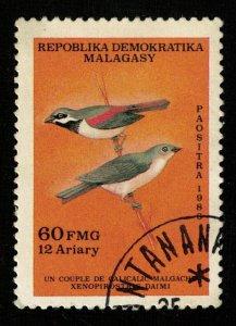 Bird (TS-2089)