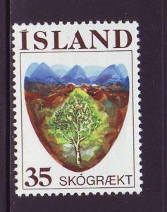 Iceland Sc 488 1975 Reforestation stamp  mint NH