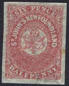 NEWFOUNDLAND 1862 FLOWERS 61/2D IMPERF