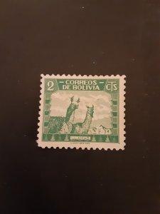 +Bolivia #251
