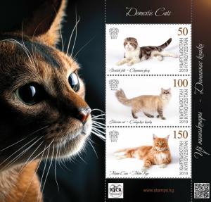 KYRGYZSTAN (KEP) / 2019 - (BLOCK) Domestic Cats (Scottish fold), MNH