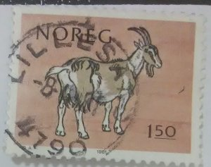 Norway Scott Cat #780