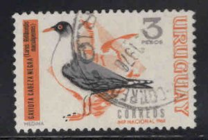 Uruguay Scott 753 Used bird stamp
