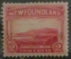 Newfoundland Scotts Car # 132