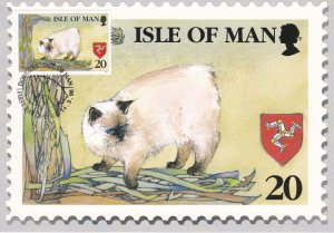 Isle of Man # 672-676, Manx Cats, Maxi Cards, with First Day Cancels