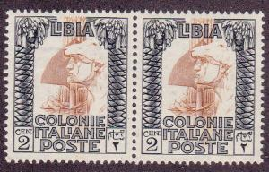 Libya # 48,  Pair, One with ZE Watermark , Mint NH