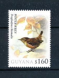 [93294] Guyana 2010 Birds Vögel Oiseaux Winter Wren  MNH