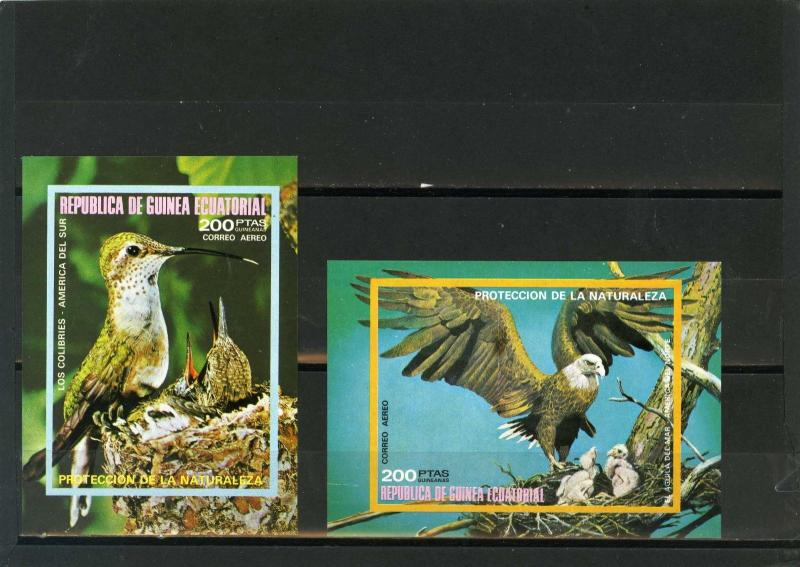 EQUATORIAL GUINEA FAUNA/BIRDS OF NORTH & SOUTH AMERICA 2 S/S IMPERF.MNH