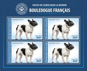 TOGO - 2019 - French Bulldog - Perf 4v Sheet - MNH