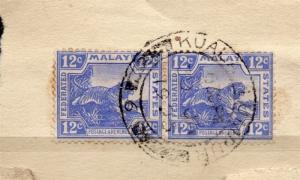 Malaya Early 1900s Tiger Issue Fine Postmark Piece  082560