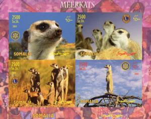 Somalia 2004 MEERKATS/LIONS & ROTARY INTERNATIONAL Shlt.(4) Imperforated MNH