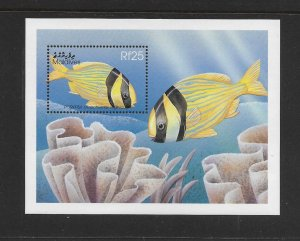 FISH - MALDIVES #2342  PORKFISH   MNH