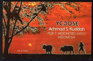QSL QSO RADIO CARD YC3OSE/Achmad/1989/Indonesia, (Q1899)
