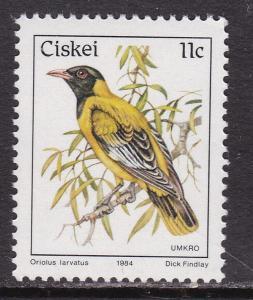 Ciskei, Fauna, Birds MNH / 1984