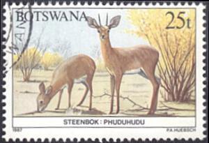 Botswana # 415 used ~ 25t Animals - Steenboks