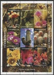 TURKMENISTAN, SOUVENIR SHEET CACTUS / PLANTS MNH