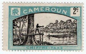 (I.B) France Colonial Postal : Post Tax 2c (Cameroun)